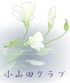 Oyamada2